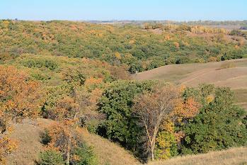 Preserve Gasslands & Woodlands