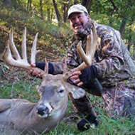 Heavy Typical Buck